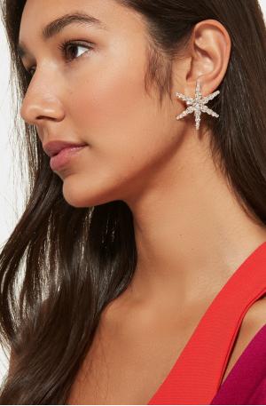 Polaris Rose Earrings